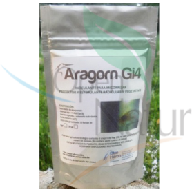 ARAGORN Gi4 750grs