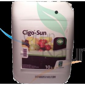 CIGO-SUN 10LT