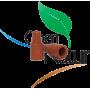 GRAPEMONE (Lobesia botrana)