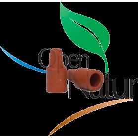 Scolytus scolytus/multistriatus