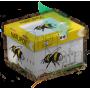 Beehive Natupol Bumblebees