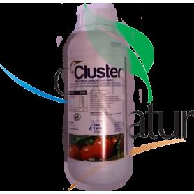 Cluster/Intruder CONSULTAR DISPONIBILIDAD