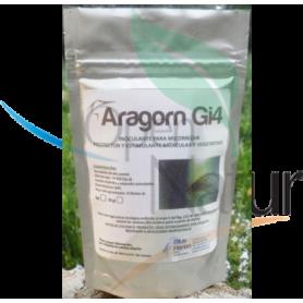 ARAGORN Gi4 50grs