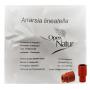 Anarsia lineatella