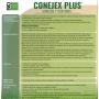 Conejex Conills