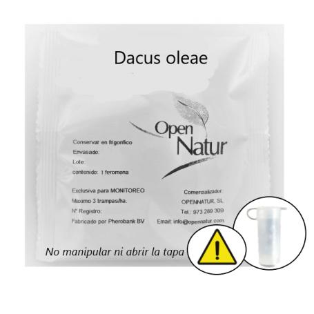 Dacus oleae