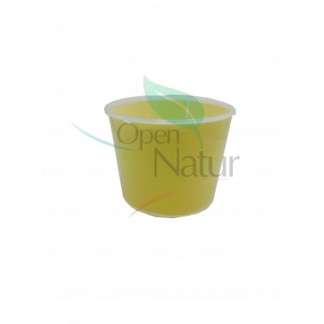 Diatraea grandiosella (barrenador del maíz)